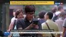 Новости на Россия 24 • В Китае вслед за Facebook и Instagram заблокирован WhatsApp