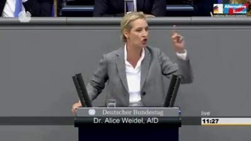 Alice Weidel.Meine Rede im Bundestag: Jetzt teilen!