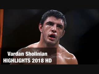Vardan Sholinian HIGHLIGHTS 2018 HD