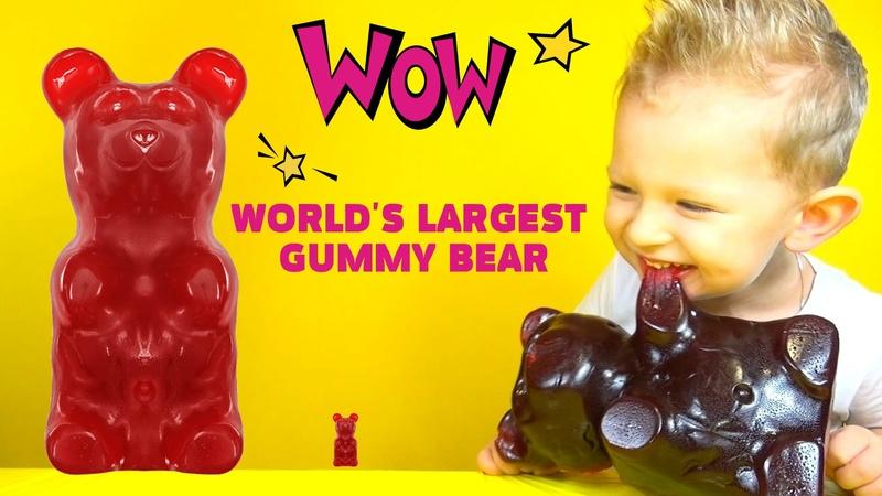 WORLD'S LARGEST GUMMY BEAR. Большой жевательный медведь ведмежуйка