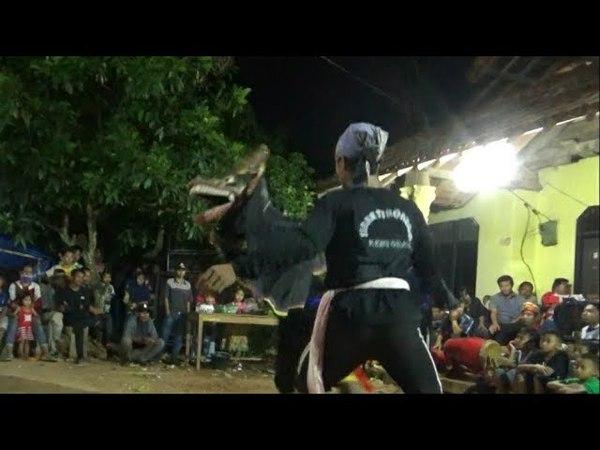 Aksi Simple Barongan Jaranan Sinar Turonggo Live Wonodadi 1 Peneng 7418 By MF 717