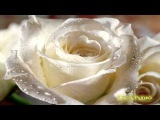 Leo Delibes - Flower Duet From Lakme