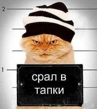 Жека Павлов, Старый Оскол - фото №4