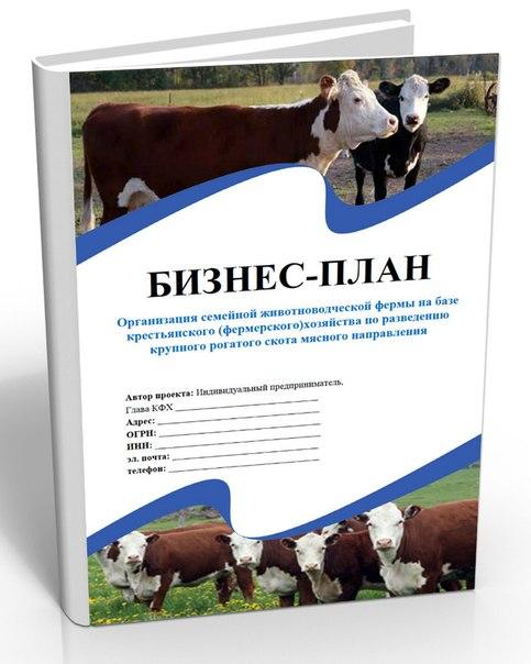 Как сделать бизнес план по сельскому хозяйству