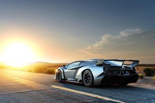 Lamborghini Veneno  Мотор: V12 рабочим объёмом 6,5 л Мощность: 750 л.с. Разгон до сотни: 2,8 сек. Максимальная скорость: 355 км/ч Масса: 1450 кг Начальная цена Lamborghini Veneno составляла: $ 4 400 000