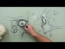 ANATOMY FOR ARTISTS: Eye Anatomy