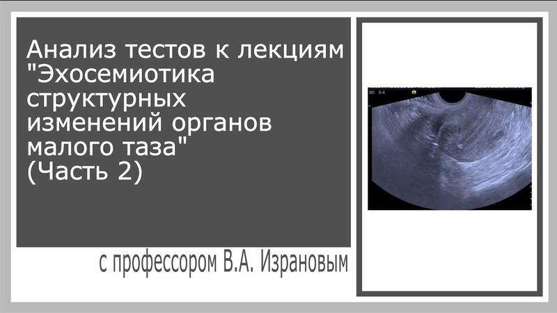 Анализ тестов к лекциям Эхосемиотика структурных изменений органов малого таза Часть 2