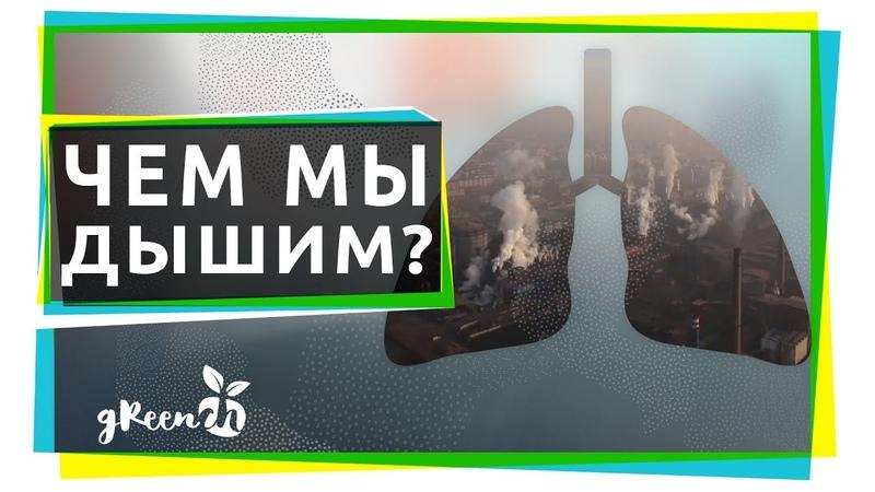 Чем дышат российские города? Исследование Гринпис