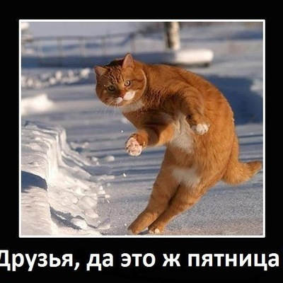 Александра Довлетова, 19 февраля 1985, Челябинск, id154597063