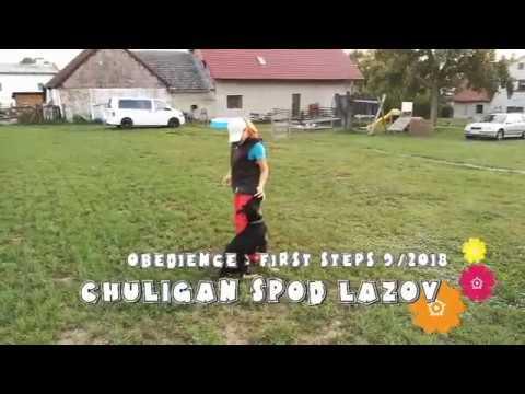 Chuligan spod Lazov 9 2018