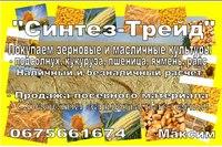 Уточнить цену.  Закупаем по Днепропетровской области зерновые и масличные культуры.  Наличный и безналичный расчет.