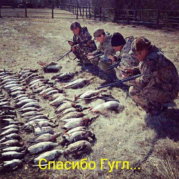 Google помогает охотникам 😂