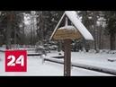 Балтийские страны прославляют нацистов как героев - Россия 24