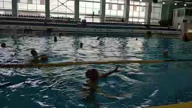Кубок мира по водному поло. Тренировка сборной России