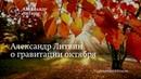 Алекcандр Литвин о гравитации октября