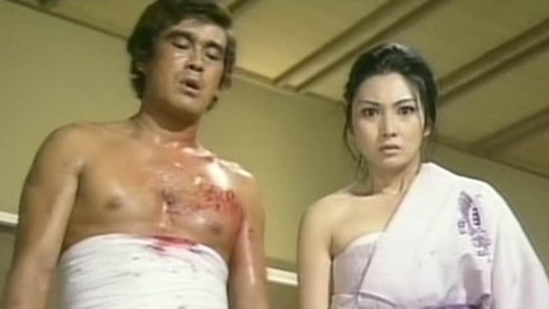 1972 - Неприкаянная серебряная бабочка 2. Рисковый игрок / Gincho Nagaremono Mesu Neko Bakuto