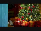 video-2ee5dfdf7573837a1122cdd897360584-V.mp4