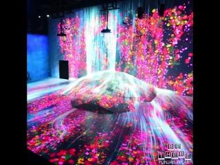 This immersive digital-art musuem in tokyo