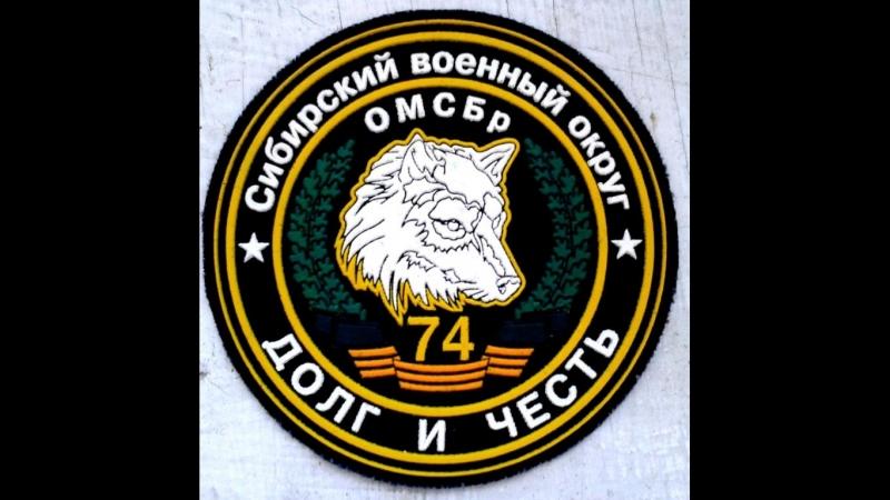 74 Омсбр (ББР) Бешеные псы. 75 годовщина - Показательное выступление разведывательно - десантной роты