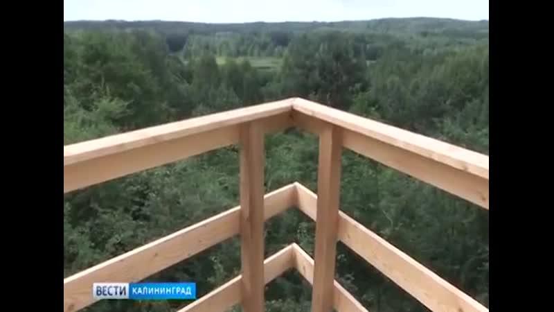 Смотровая площадка (пос. Краснолесье).