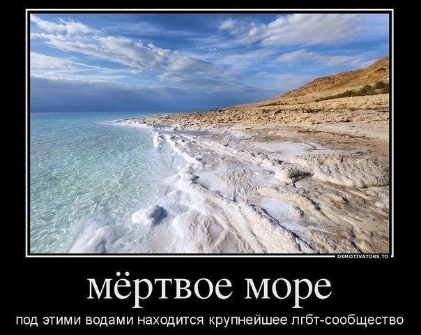 http://cs322229.vk.me/v322229086/7bf6/qbhY1_M-hB8.jpg