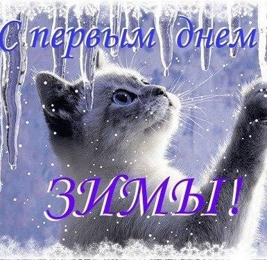 Фото №456244811 со страницы Самвела Ананяна