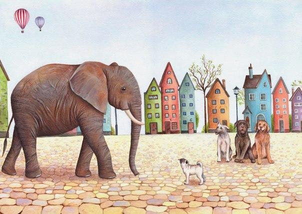 фото слон и моська