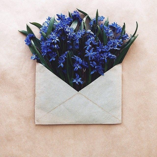 Картинок, открытки цветы в конверте