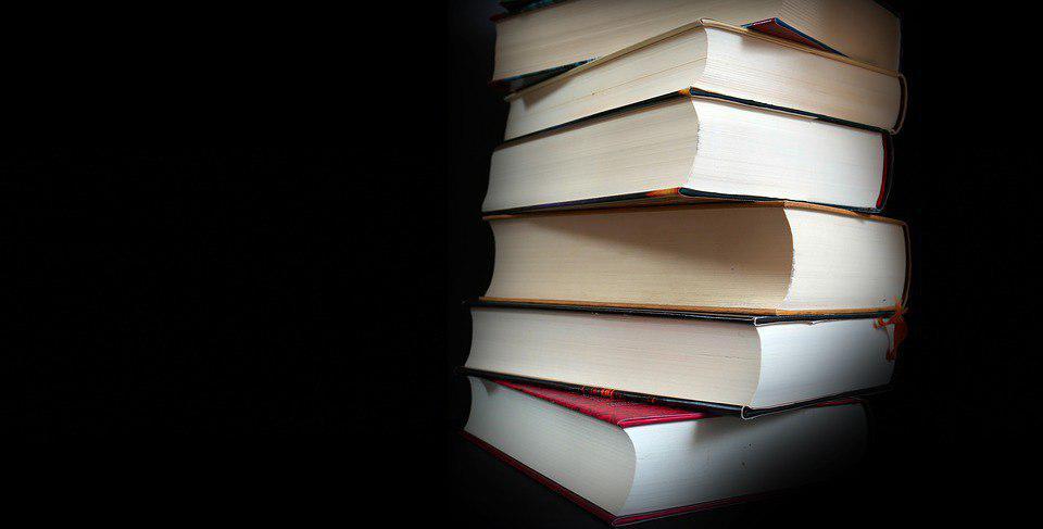 «Библионочь» пройдет 21 апреля в библиотеке на Алтушке