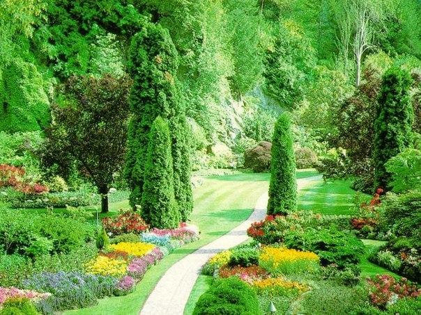 "Парк ""Райский Сад"" | ✿✿✿."