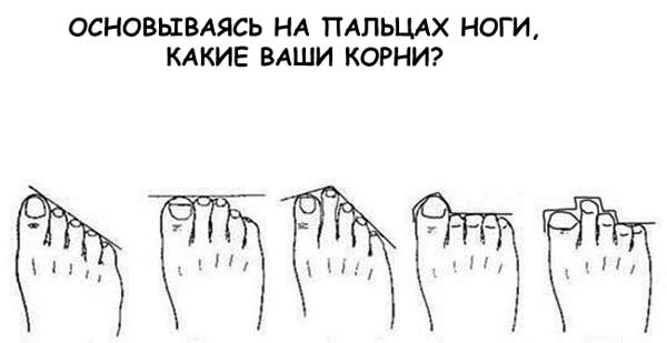 По расположению пальцев ног определяем национальность  Мы снова гадаем. Вспомните ваши ноги - оказывается, по их пальцам можно определить наше происхождение. Не, ну наши предки по любому кем-то были - или греками, или египтянинами, или римлянами. А на худой конец - кельтами.  Пройти тест в источнике...