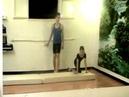 Урок 18.Волна Элементы акробатики