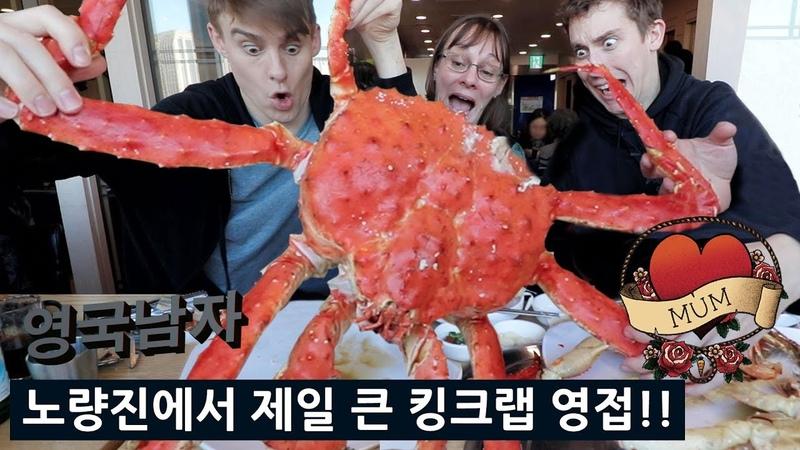 엄마랑 한국 수산시장 가서 제일 큰 킹크랩 달라고 했더니...😱😍