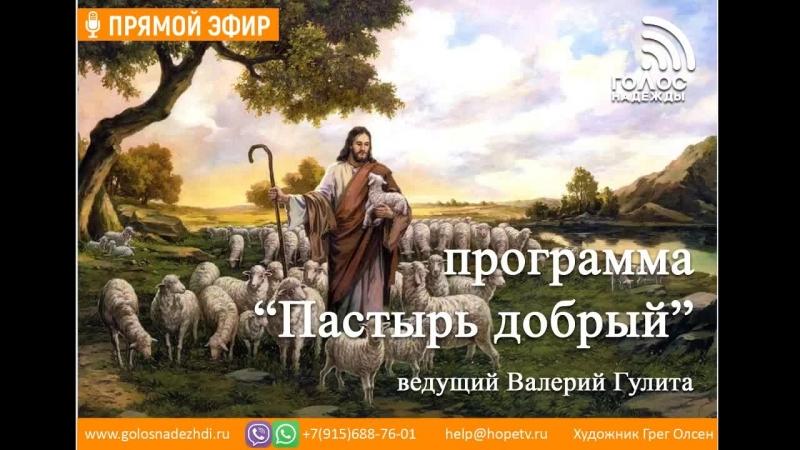 Сила креста программа Пастырь добрый