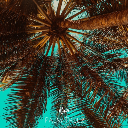 Rain альбом Palm Trees