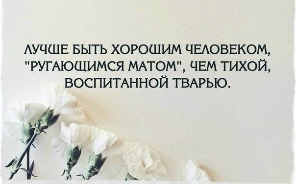 https://pp.vk.me/c615816/v615816512/31d/qe4t6q6VX7s.jpg