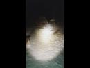 Всем привет переделываю фонари япард с КНОПКОЙ ОН ДЛЯ МУТНИКА Под 26 акб 3 штук Светодиод XHP 50 теплый свет 3000к Драй
