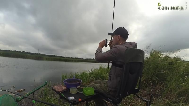 Рыбалка на Фидер. Три часа ловли на Канале.