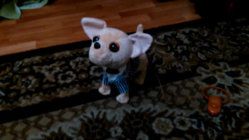Мягкая игрушка Собачка Чи Хуа Хуа, на пульте-поводке
