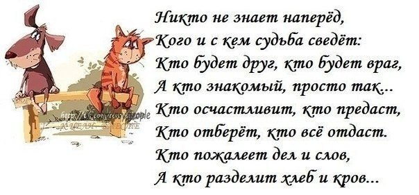 http://cs617227.vk.me/v617227567/298c/dBWusXynepU.jpg