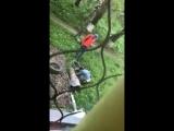 Надоедливые кладоискатели в Новокузнецке