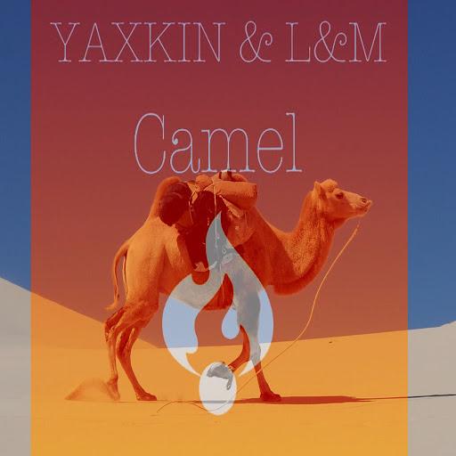 L альбом Camel