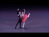 12.05.2018 Bolshoi Theatre, Don Quixote Grand Pas, Ekaterina Krysanova, Ivan Vasiliev, Svetlana Adyrkhaeva Gala