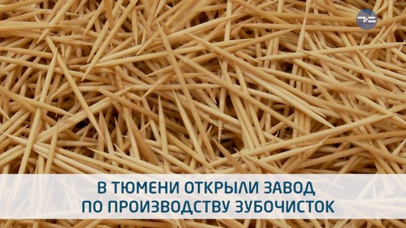 Тюменские зубочистки