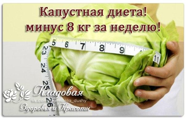 Диета на неделю минус 5 кг 67a7a004792f943 shreesanchar. Com.