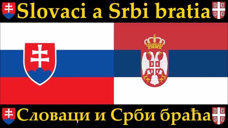 REBORN V MOCI ZLA српски превод