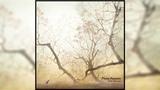 Yuki Murata - Piano Fantasia [Full Album]