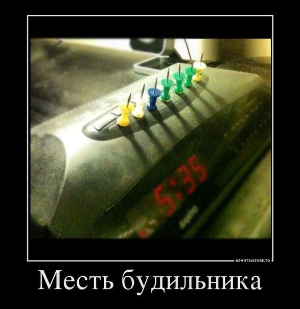 Демотиваторы 50 фото