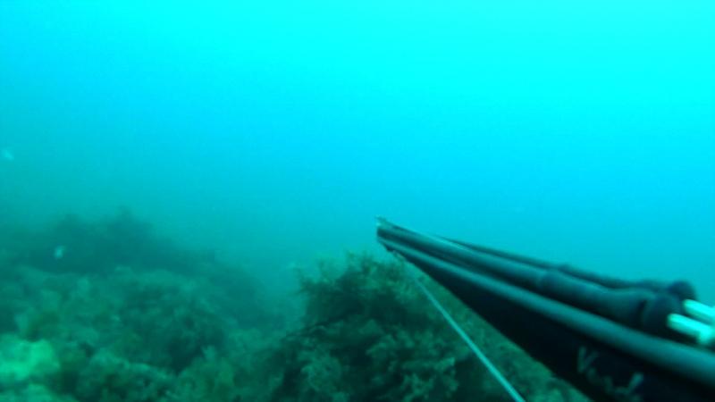 Подводная охота Крым ;)