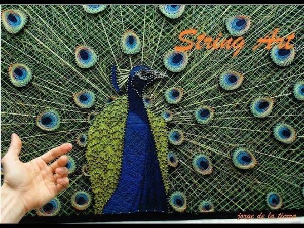 String art paon pavo real hilorama primera parte jorge de la tierra